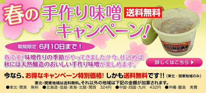 春の手作り味噌キャンペーン